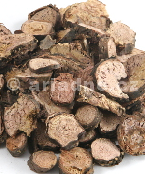 Rhodiola rosea, dried root